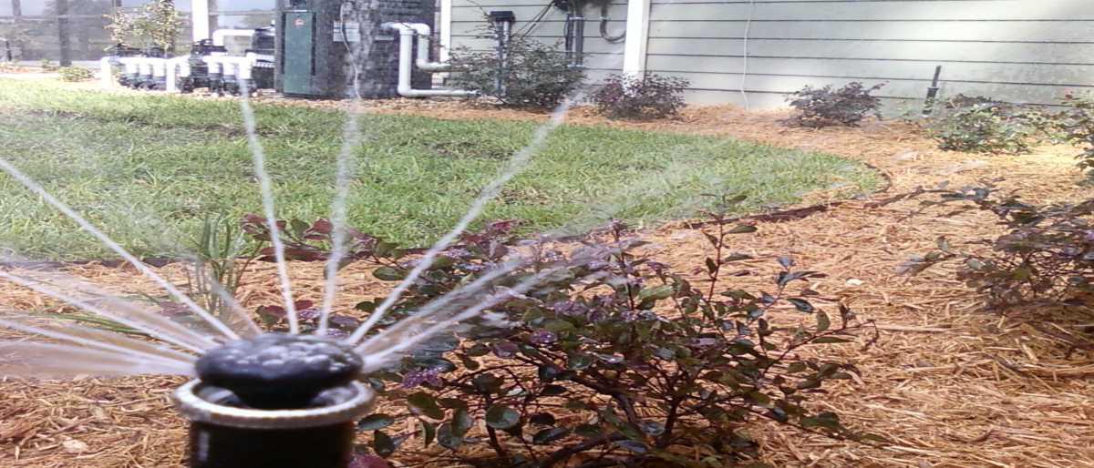 Permalink to: Irrigation Set-up